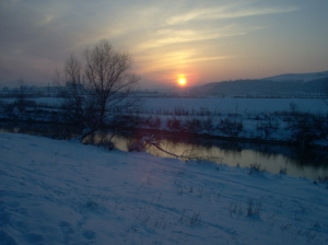 iarna19